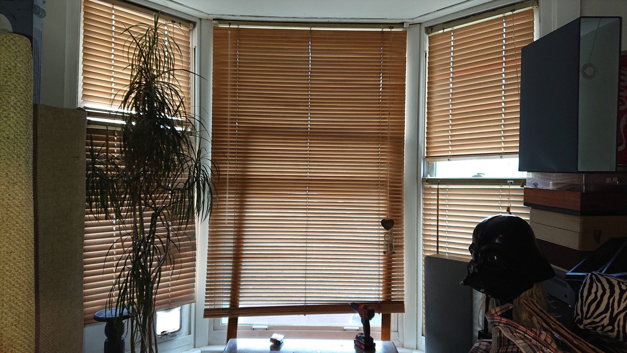 Venitian Blinds image scaled