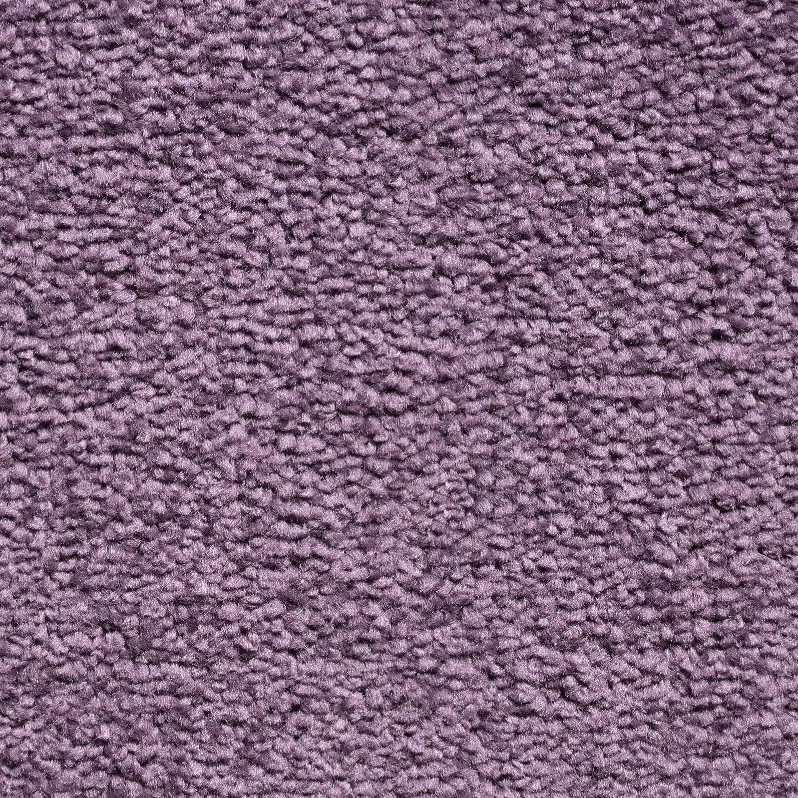 Carousel 115 Violet