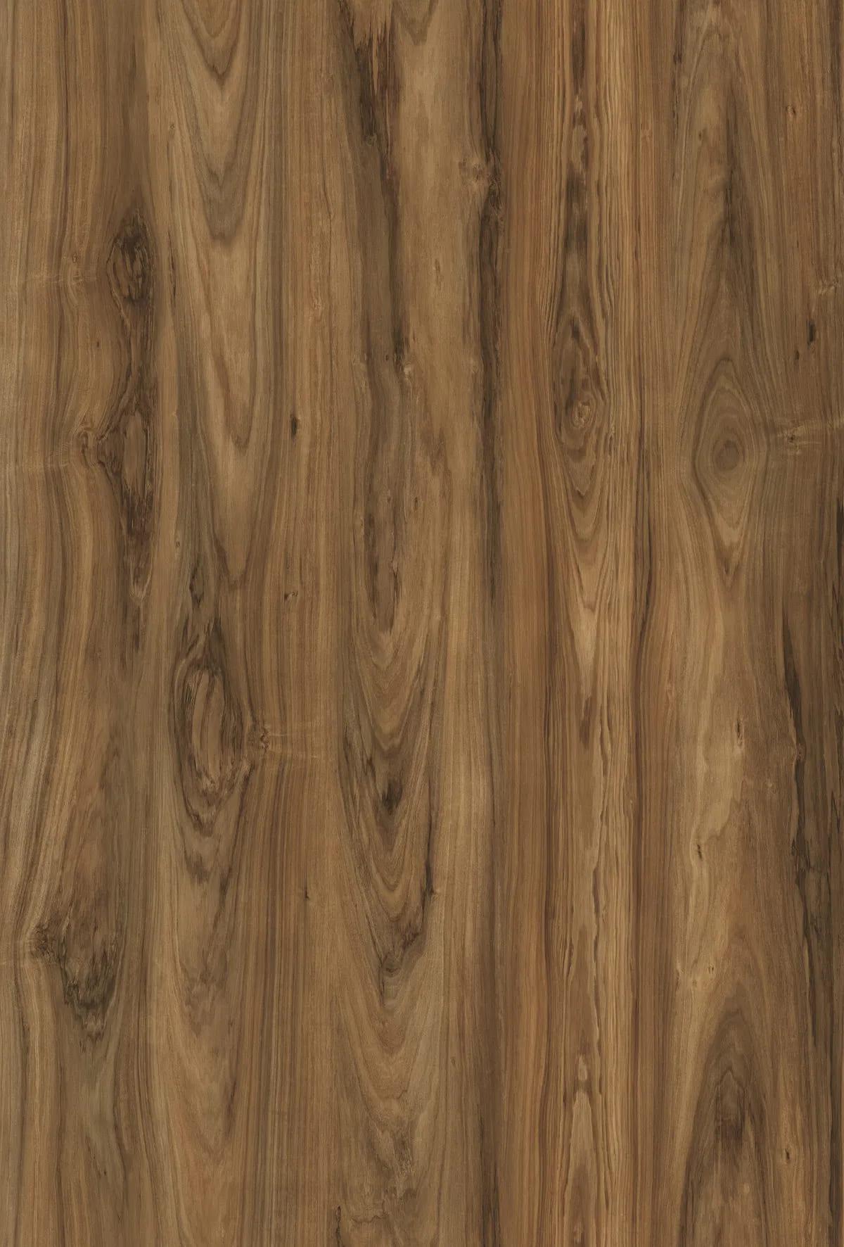 K5754 Blackwood Puebla 1